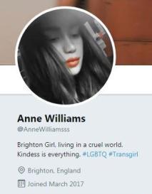 Anne Twitter profile